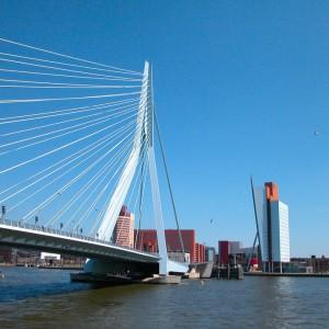 Rotterdam Birwa Tours