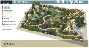 Plattegrond vlindertuin emsflower Birwa Tours