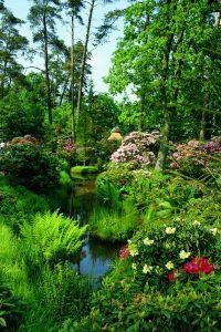 Rhododendron en bad zwischenahn