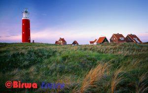 Texel Birwa Tours Dagtochten