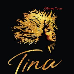 Tina Turner - Musical - Birwa Tours