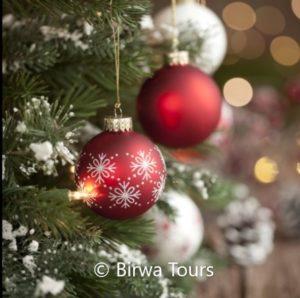 rondvaart met minikerstmarkt - Birwa Tours